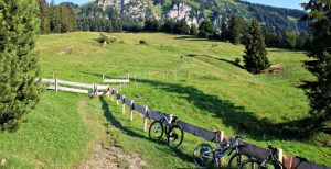 3 Mountain-Bikes stehen an einem Zaun auf einer Alm